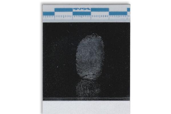 BVDA_Instant_Lifter_white_fingerprint_powder_lrg