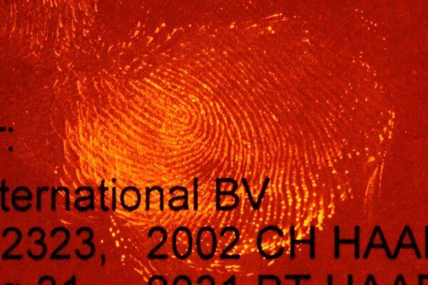 b79500_DFO_stationary_fluorescence_lrg